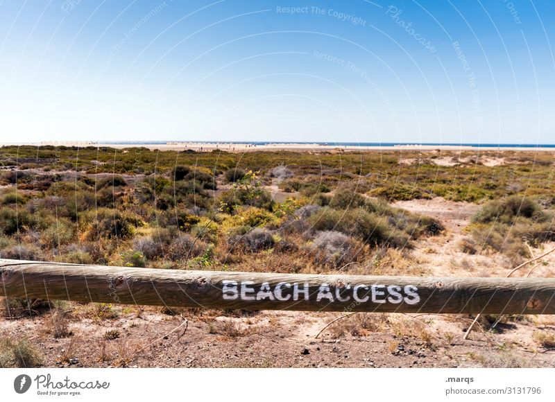 access granted Vacation & Travel Far-off places Summer Nature Horizon Beach Relaxation Sky Sand Beautiful weather Cloudless sky Landscape Summer vacation