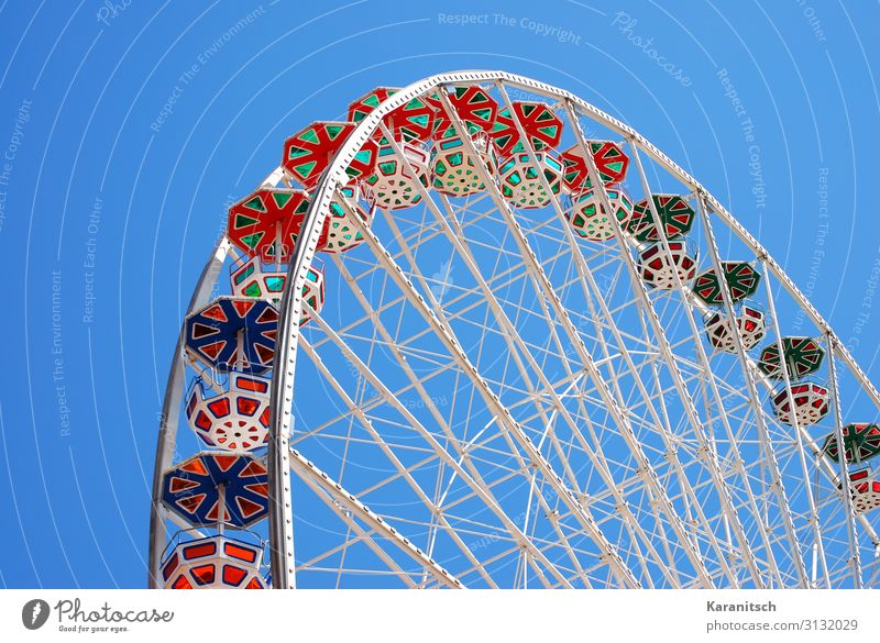 flower wheel Joy Adventure City trip Fairs & Carnivals Cloudless sky Movement Rotate Happiness Large Tall Round Blue Multicoloured Green Red White