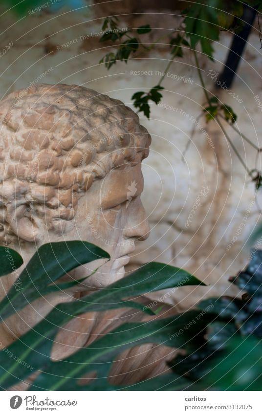 Man Head Romance Statue Hide Curl Majorca Backyard Classic Terracotta