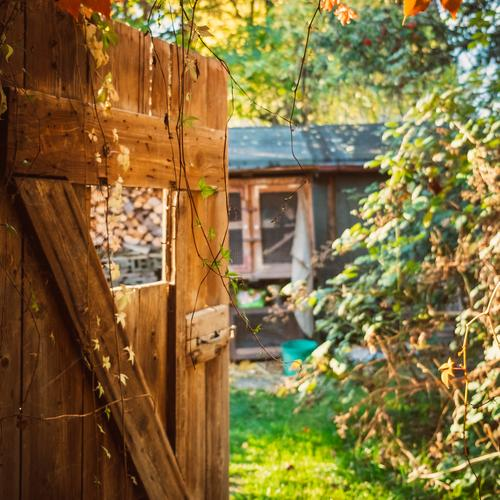 View through a wooden door in the garden in autumn Autumn Architecture Background picture Beautiful Barn Scales Storage shed Multicoloured Copy Space top