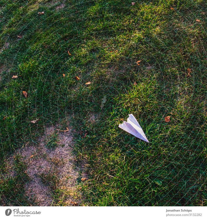 Paper planes on the meadow Autumn Airplane Multicoloured Copy Space top Dream Wrinkles Garden Gardening Grass Meadow Exterior shot Toys Copy Space bottom