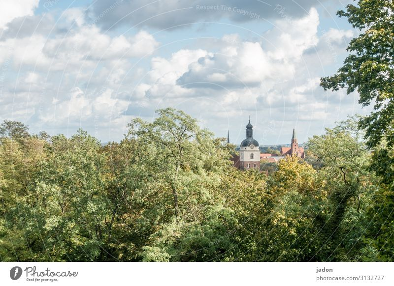 cityscape. Elegant Style Tourism Painting and drawing (object) Nature Landscape Clouds Autumn Tree Bushes Forest Hill Town Old town Skyline Church Dome Building