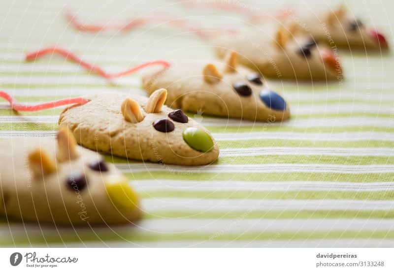 Cookies with mouse shaped and red licorice tail Dessert Decoration Group Pet Mouse Fresh Delicious Tradition food Tablecloth sweet Snack biscuit peanuts