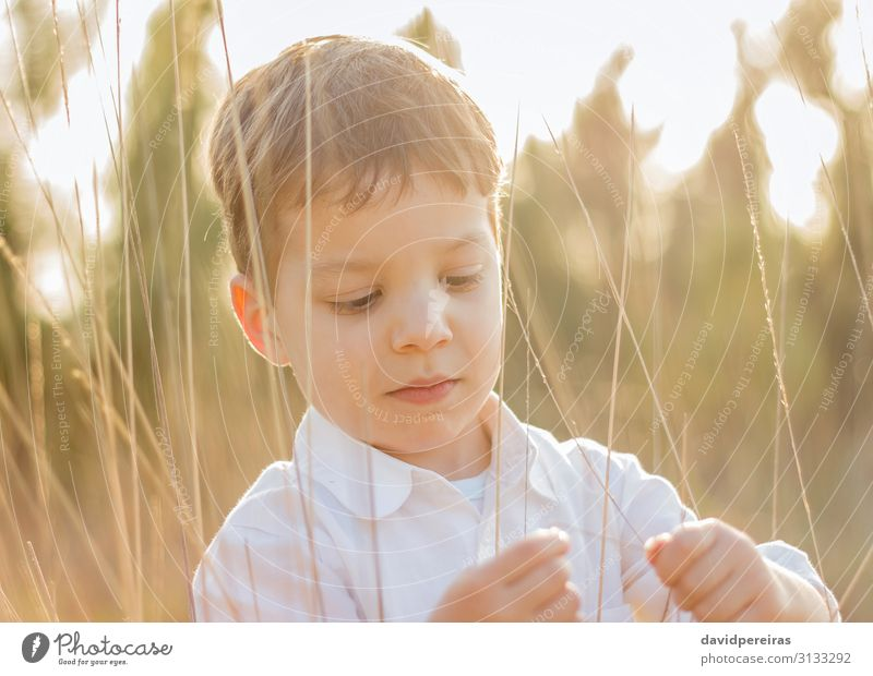 Kid in field playing with spikes at summer sunset Lifestyle Joy Happy Beautiful Leisure and hobbies Playing Freedom Summer Sun Child Human being Boy (child)