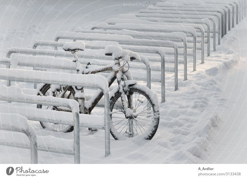 Bicycle in the snow Leisure and hobbies Cycling Sports Sporting Complex Elements Winter Snow Snowfall Town Deserted Parking lot Bicycle lot Driving Stand Wait