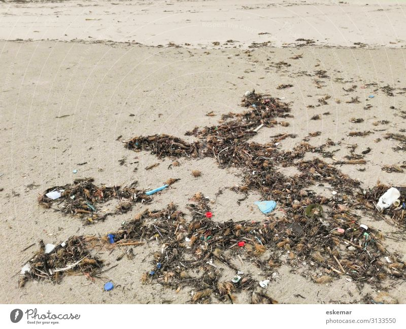 Plastic garbage on the beach Beach Island Environment Sand Coast Packaging Tube Plastic packaging Trash Plastic waste dirt filth Trashy Gloomy Many Brown