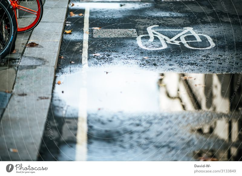 cycle path Bicycle Cycle path off Cycling Wheel ways Puddle reflection Cycling tour Street Transport Driving Road traffic Exterior shot Means of transport