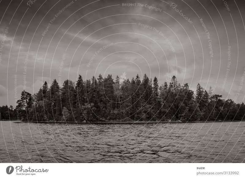obscureness Adventure Island Environment Nature Landscape Elements Water Sky Bad weather Tree Forest Lakeside Sadness Dark Gray Grief Longing Loneliness Sweden