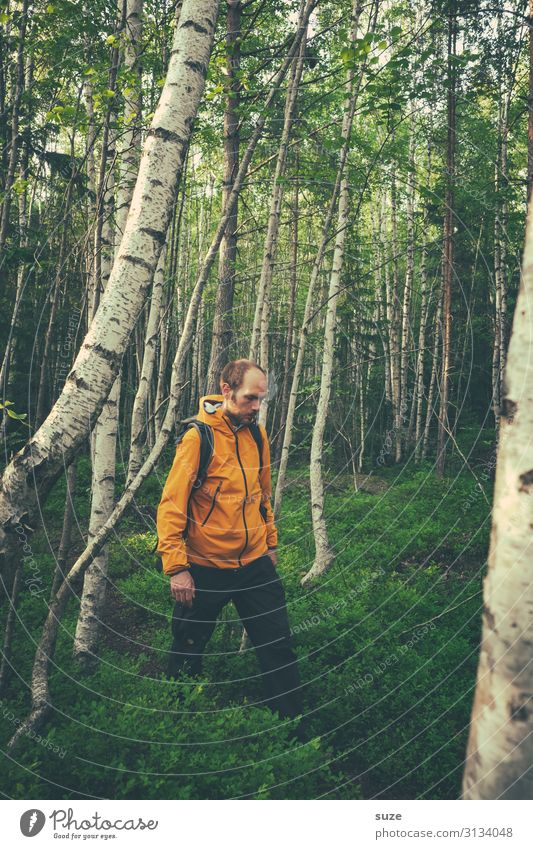 thought trail Healthy Calm Vacation & Travel Trip Adventure Freedom Hiking Human being Masculine 1 30 - 45 years Adults Environment Nature Landscape Plant