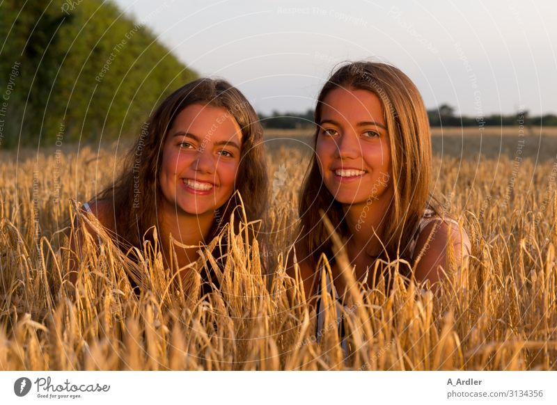 two young women in the cornfield Life Harmonious Well-being Contentment Human being Feminine Young woman Youth (Young adults) Sister Family & Relations