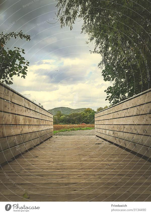 wooden bridge Trip Freedom Cycling tour Jogging Hiking Nature Landscape Sky Clouds Autumn Lanes & trails Bridge Movement Discover Relaxation Walking