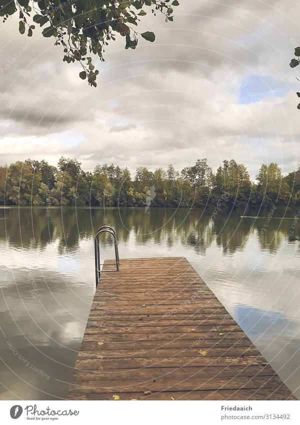 Reflection in the lake Trip Swimming & Bathing Jogging Nature Landscape Water Sky Clouds Autumn Lakeside Relaxation Movement Leisure and hobbies Calm