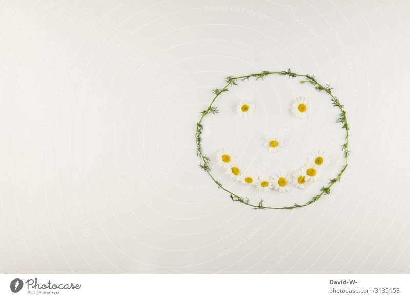 smile flowers shape face Face happy Smiley Good mood spring Spring fever floral greeting