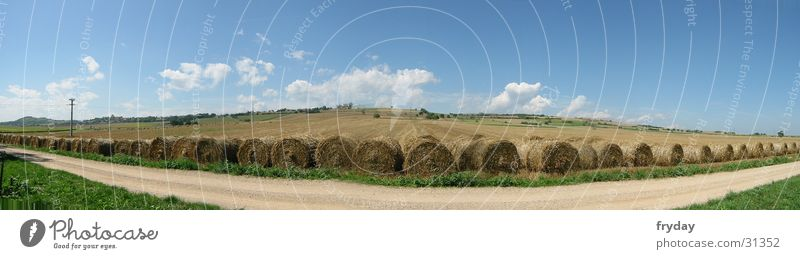 Field in wide ... Panorama (View) Wide angle Straw Bale of straw France Footpath Clouds Grain Large Panorama (Format)