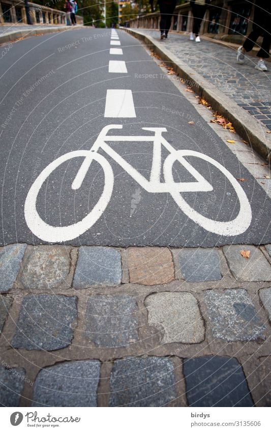 Narrow-gauge bicycle path Human being 5 Bridge Transport Traffic infrastructure Cycling Pedestrian Street Road sign Cycle path Sign Line Going Esthetic