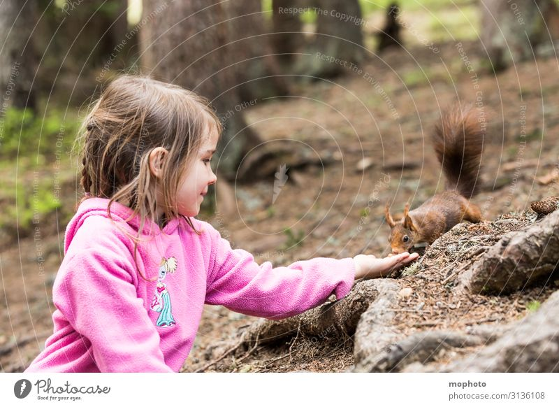 Feeding squirrels #2 Vacation & Travel Trip Child Human being Feminine Toddler Girl Infancy 1 3 - 8 years Nature Animal Tree Forest Wild animal To feed Sit Wait