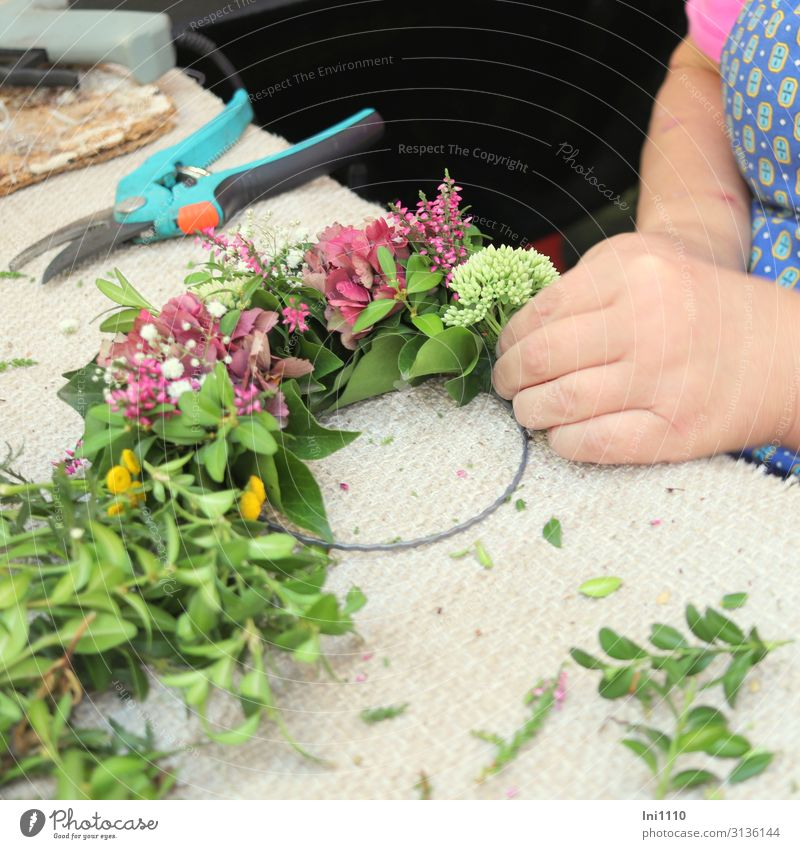 Flower wreath is bound Joy Living or residing Plant Leaf Blossom Foliage plant Metal Sign Green Pink White Bond Autumnal Floristry Self-made Front door Beech