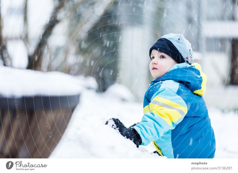 Boy in the snow Lifestyle Joy Face Playing Winter Snow Winter vacation Garden Child Human being Masculine Toddler Boy (child) Infancy 1 1 - 3 years 3 - 8 years