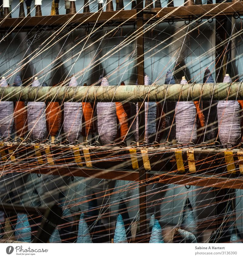entanglement Art Sewing thread Loom Touch Discover Esthetic Thin Cuddly Near Natural Beautiful Warmth Blue Violet Orange Emotions Contentment