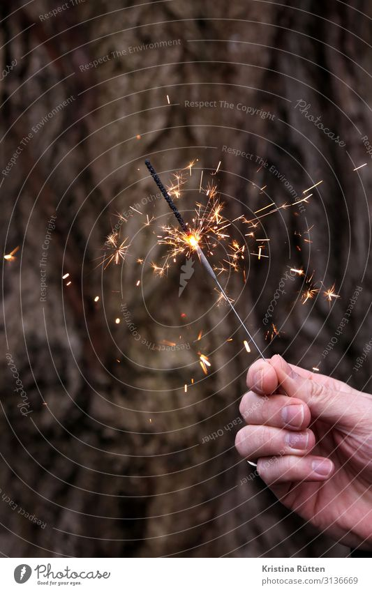 sparkler Joy Happy Event Feasts & Celebrations Valentine's Day New Year's Eve Wedding Birthday Hand Glittering Happiness Positive Moody Joie de vivre (Vitality)