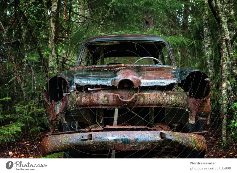Old Water Tree Forest Senior citizen Rain Car Metal Transport Wait Transience Wet Broken Industry Past Fear of the future