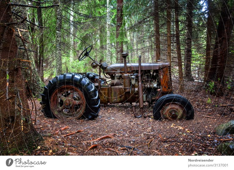Old and forgotten Work and employment Workplace Agriculture Forestry Unemployment Retirement Machinery Technology Nature Earth Rain Tree Virgin forest