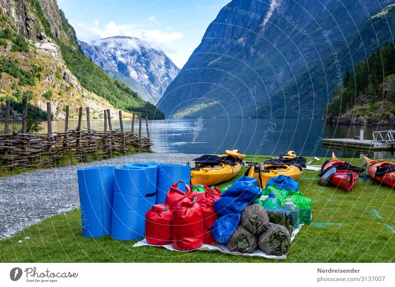 Canoeing along the fjord Lifestyle Vacation & Travel Adventure Expedition Ocean Sports Aquatics Nature Landscape Water Summer Beautiful weather Grass Meadow