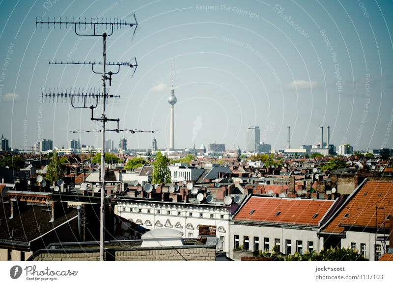 Antenna for the city Town Sky Summer Beautiful weather Neukölln Town house (City: Block of flats) built Roof Domestic antenna Landmark Berlin TV Tower Authentic