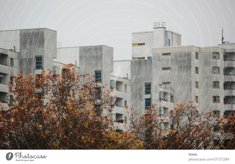 Sky Town Tree House (Residential Structure) Window Dark Architecture Wall (building) Berlin Building Wall (barrier) Gray Design Line High-rise Gloomy