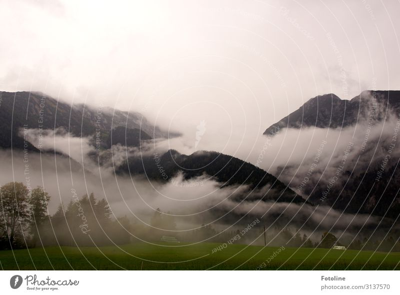 Nebulised Environment Nature Landscape Plant Elements Earth Sky Clouds Autumn Tree Grass Rock Mountain Far-off places Natural Green Black White Austria