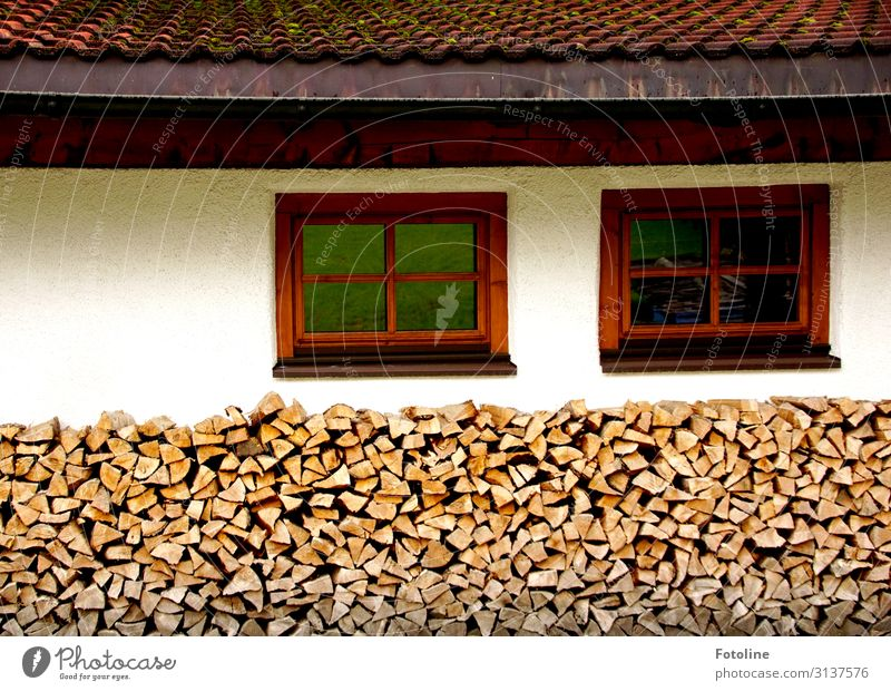 Wood in front of the hut (II) Village House (Residential Structure) Detached house Hut Wall (barrier) Wall (building) Facade Window Roof Near Warmth Brown Red