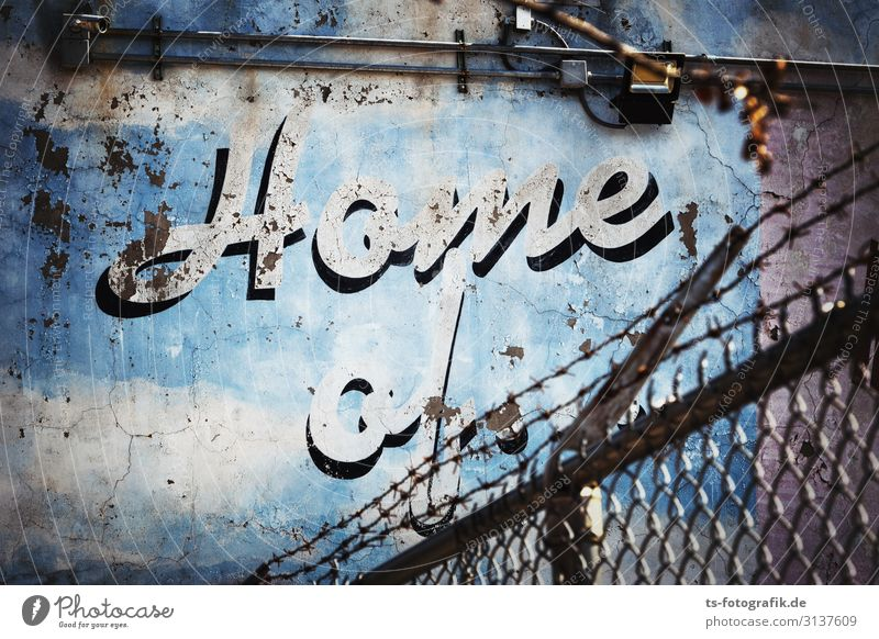 Home of the blue crumbling wall New York City Deserted Manmade structures Building Wall (barrier) Wall (building) Facade Fence Wire netting Wire netting fence