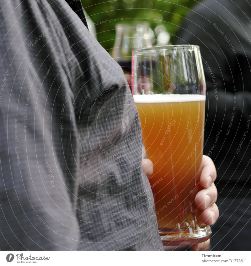 Take one to the chest Beverage Beer Wheat beer Glass Beer glass wheat beer glass Human being Hand Fingers Feasts & Celebrations To enjoy Gold Gray Green Joy