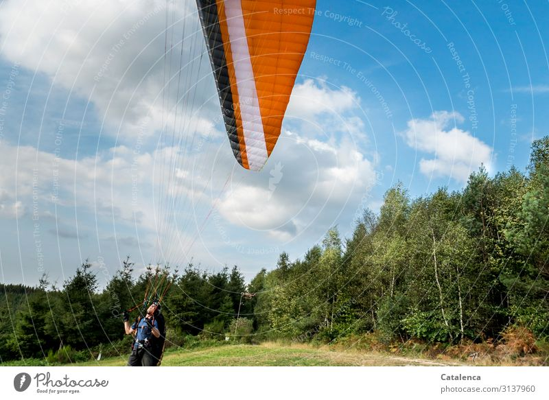 Jump into the weekend Sports Paragliding launch site Masculine 1 Human being Nature Landscape Plant Sky Clouds Summer Beautiful weather Tree Grass Spruce