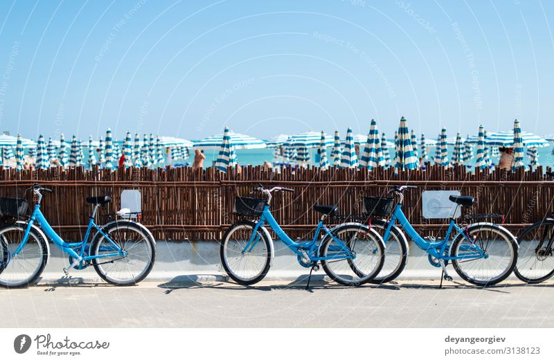 Rental bikes on the beach. Blue bicycles on the street. Lifestyle Relaxation Leisure and hobbies Vacation & Travel Tourism Beach Sports Transport Street Vehicle