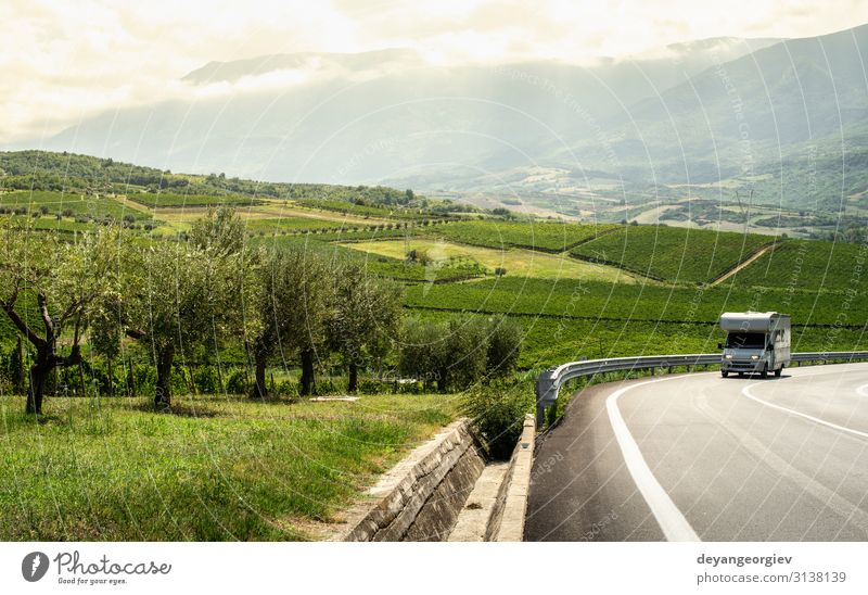 Asphalt road, vineyards and olive trees in countryside. Vacation & Travel Tourism House (Residential Structure) Garden Nature Landscape Autumn Tree Hill Village