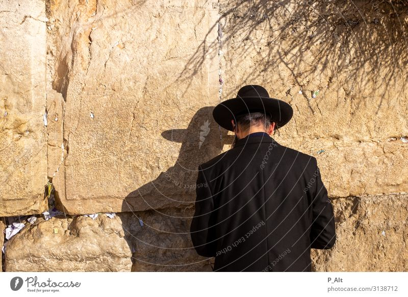 Wailing Wall II Man Adults Head Facial hair Back 1 Human being West Jerusalem Israel Wall (barrier) Wall (building) Acceptance Religion and faith Prayer Deepen