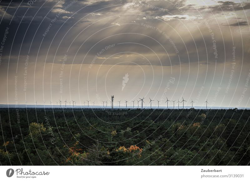 Windmills on the horizon under a dramatic sky Energy industry Wind energy plant Energy crisis Sky Clouds Climate Climate change Forest Observe Gray Green
