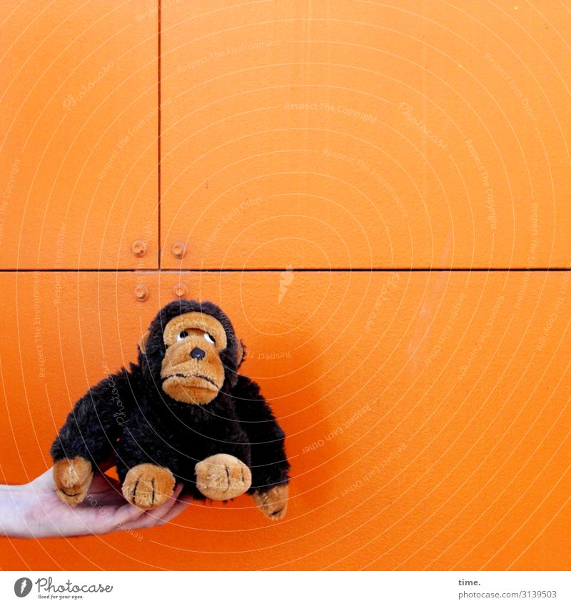 Francois is still skeptical about what's coming. Masculine Man Adults Hand 1 Human being Wall (barrier) Wall (building) Monkeys Animal Prefab construction Metal