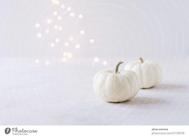 Elegant autumn decoration with white pumpkins and light bokeh Vegetable Lifestyle Style Design Feasts & Celebrations Thanksgiving Hallowe'en Nature Autumn
