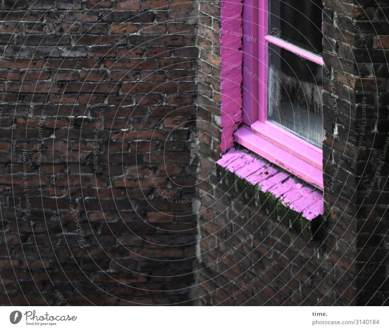 pinged up Hamburg Downtown House (Residential Structure) Architecture Wall (barrier) Wall (building) Window Glass Brick Exceptional Dark Rebellious Town Wild