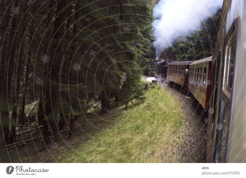 nostalgia Forest Transport Nature Steam