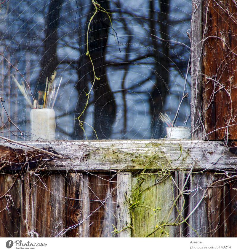 Old Blue White Tree House (Residential Structure) Window Black Garden Brown Idyll Creativity Simple Write Village Draw Hut