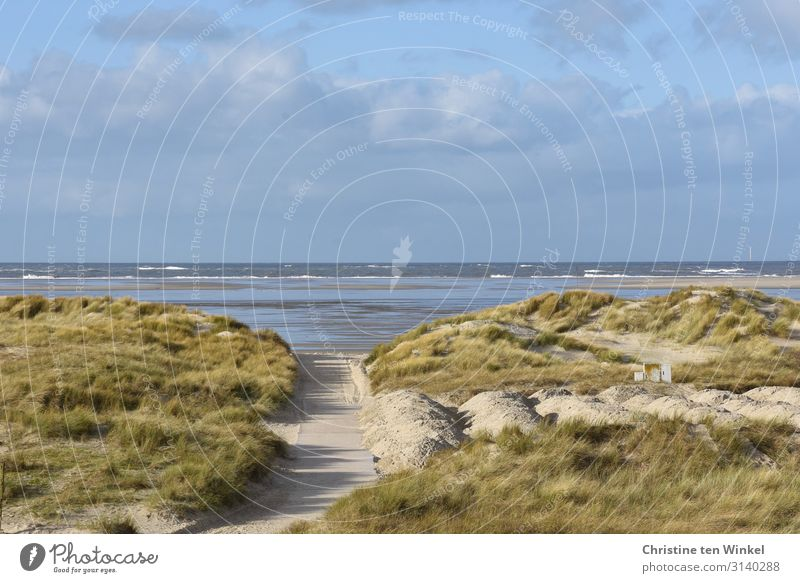 Dune landscape on Borkum with a view of the North Sea Vacation & Travel Tourism Ocean Island Waves Environment Nature Landscape Sand Water Sky Clouds Autumn
