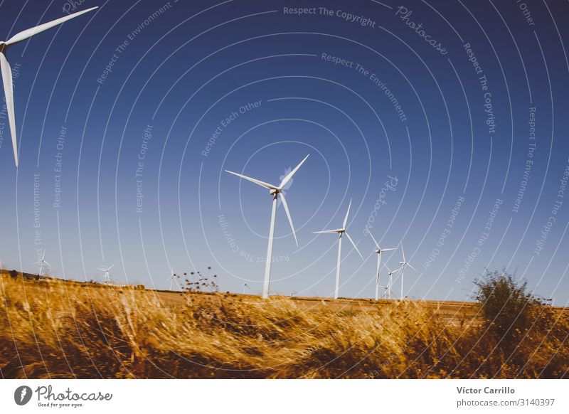 Alternative energy against climatic change Technology Renewable energy Wind energy plant Industry Good Modern Natural Clean Smart Beautiful Blue molinos viaje