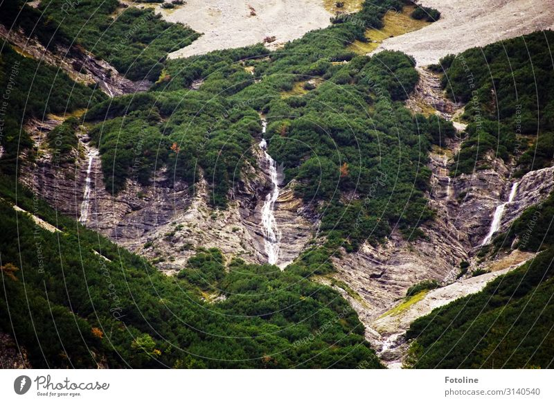 waterfalls Environment Nature Landscape Plant Autumn Forest Rock Alps Mountain Waterfall Bright Wet Natural Gray Green far Austria Federal State of Tyrol