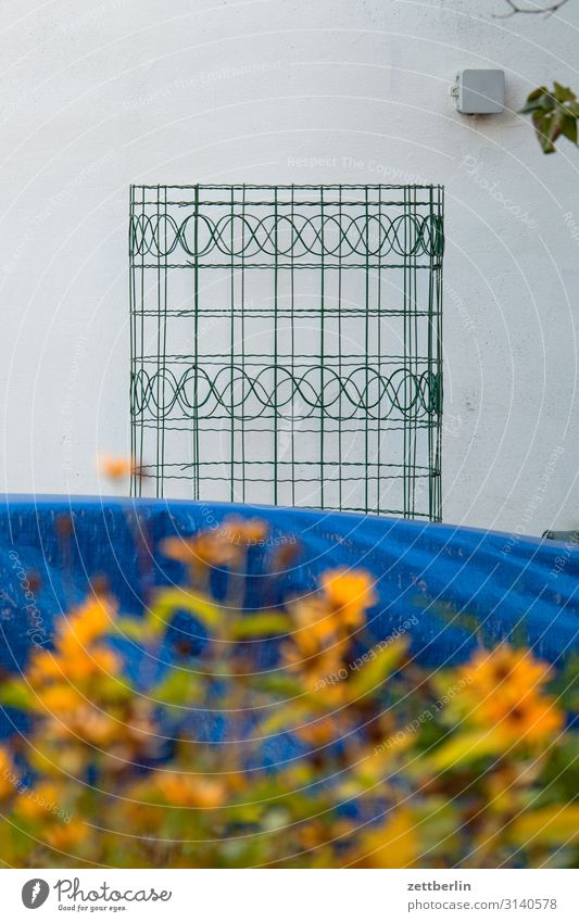 Wire mesh with pattern Wire netting Wire netting fence Fence Wire fence Pattern Design Creeper Tendril Coil Border Garden Neighbor Flower Blossom Blossoming