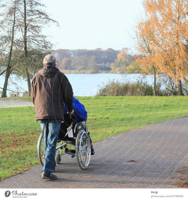 male senior pushes a person in a wheelchair on a path by the lake Illness Trip Human being Masculine Man Adults Male senior Family & Relations Senior citizen 2