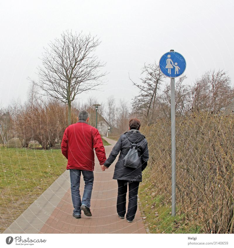 Rear view of a couple of elderly people holding hands and walking along a footpath Human being Masculine Feminine Woman Adults Man 2 45 - 60 years Environment