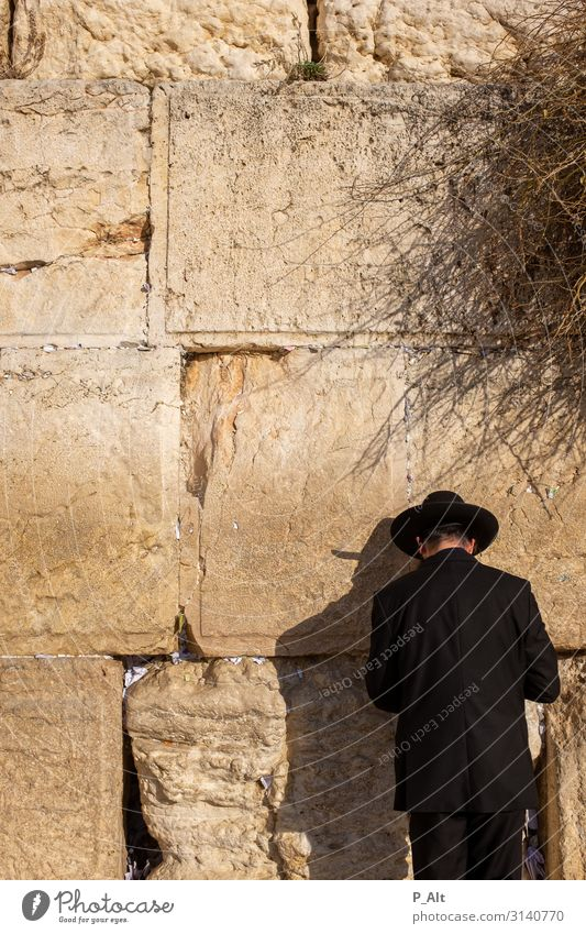 Wailing Wall Head Back Wall (barrier) Wall (building) Virtuous Vice Tolerant Judicious Religion and faith Judaism Hat The Wailing wall Israel West Jerusalem